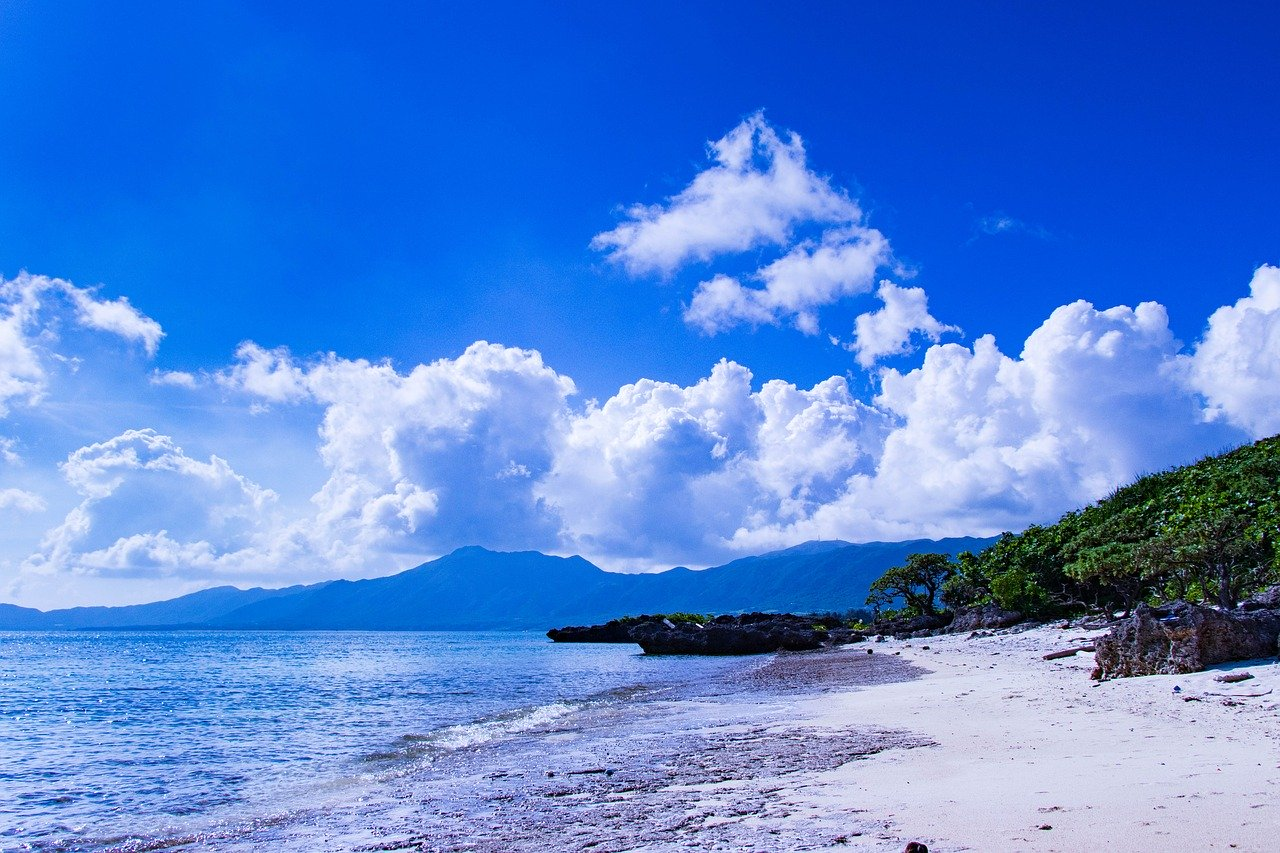 Sango-Meeres-Koralle